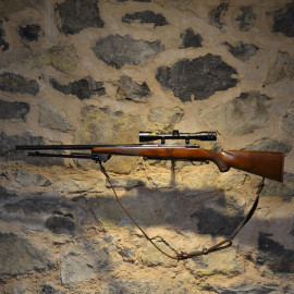 Carabine Ruger M77 - 22-250